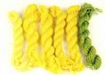 Dyers's Chamomile dyed wool
